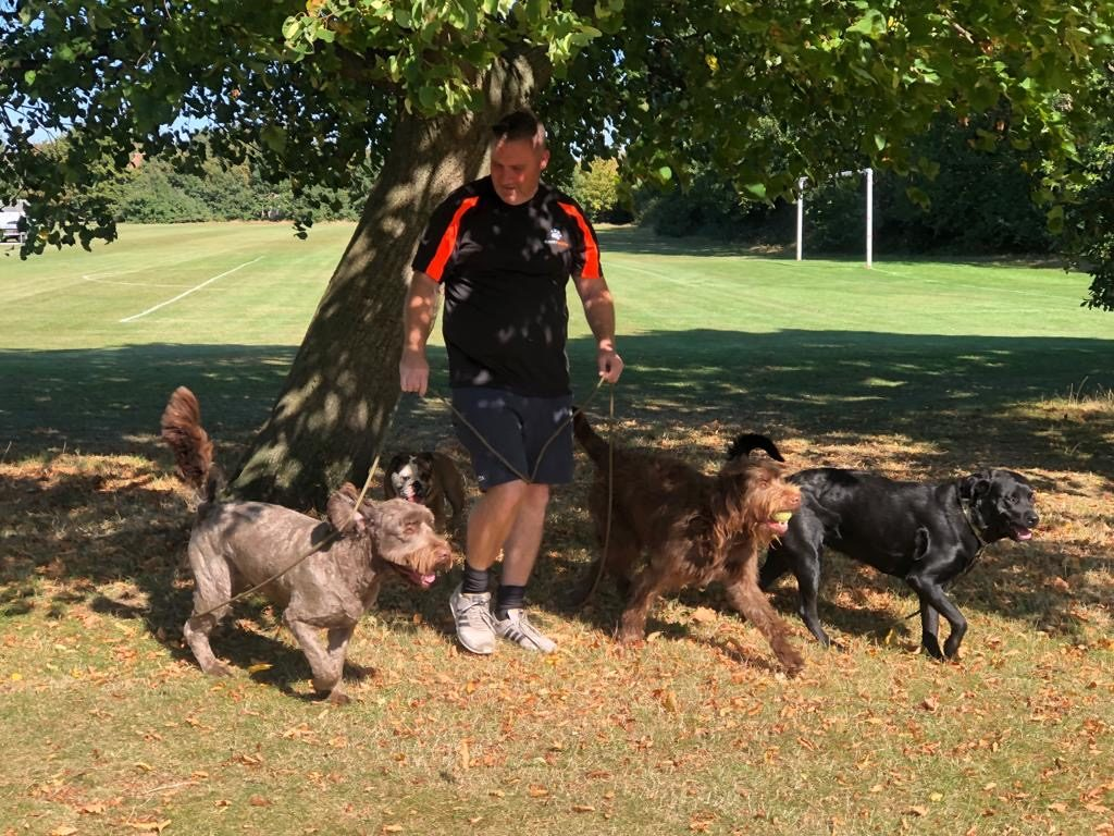 New Malden dog walkers to hire